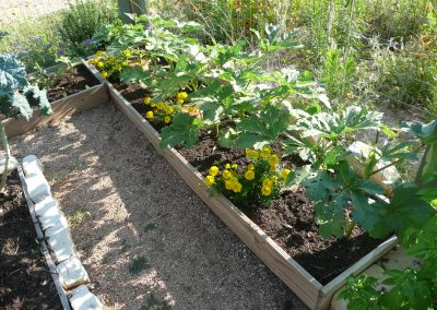 Founder, Lori Haynes, garden