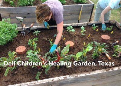 Dell Children's Healing Garden, TX